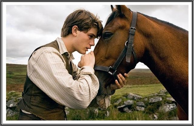 blog-2-horse